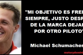 Michael-Schuma