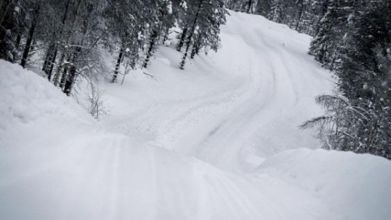 PREVIO ARTIC RALLY FINLANDIA 2021 WRC